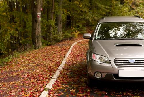 autumn driving