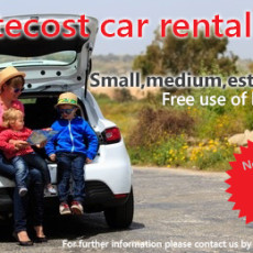 Car rental sale in May (2016)