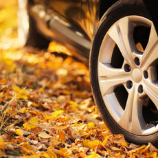 Autumn car tips