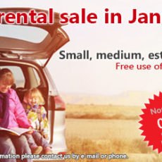 Car rental sale in January (2017)