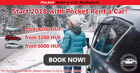 Car rental sale in January (2018)